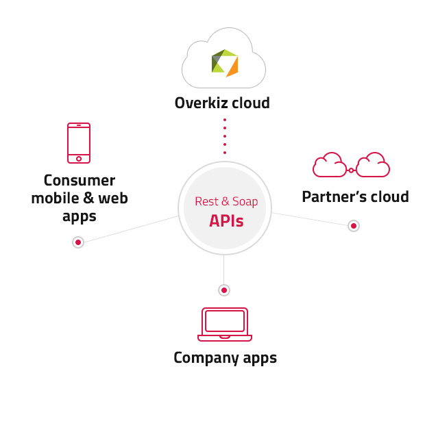 Why use Overkiz APIs ?